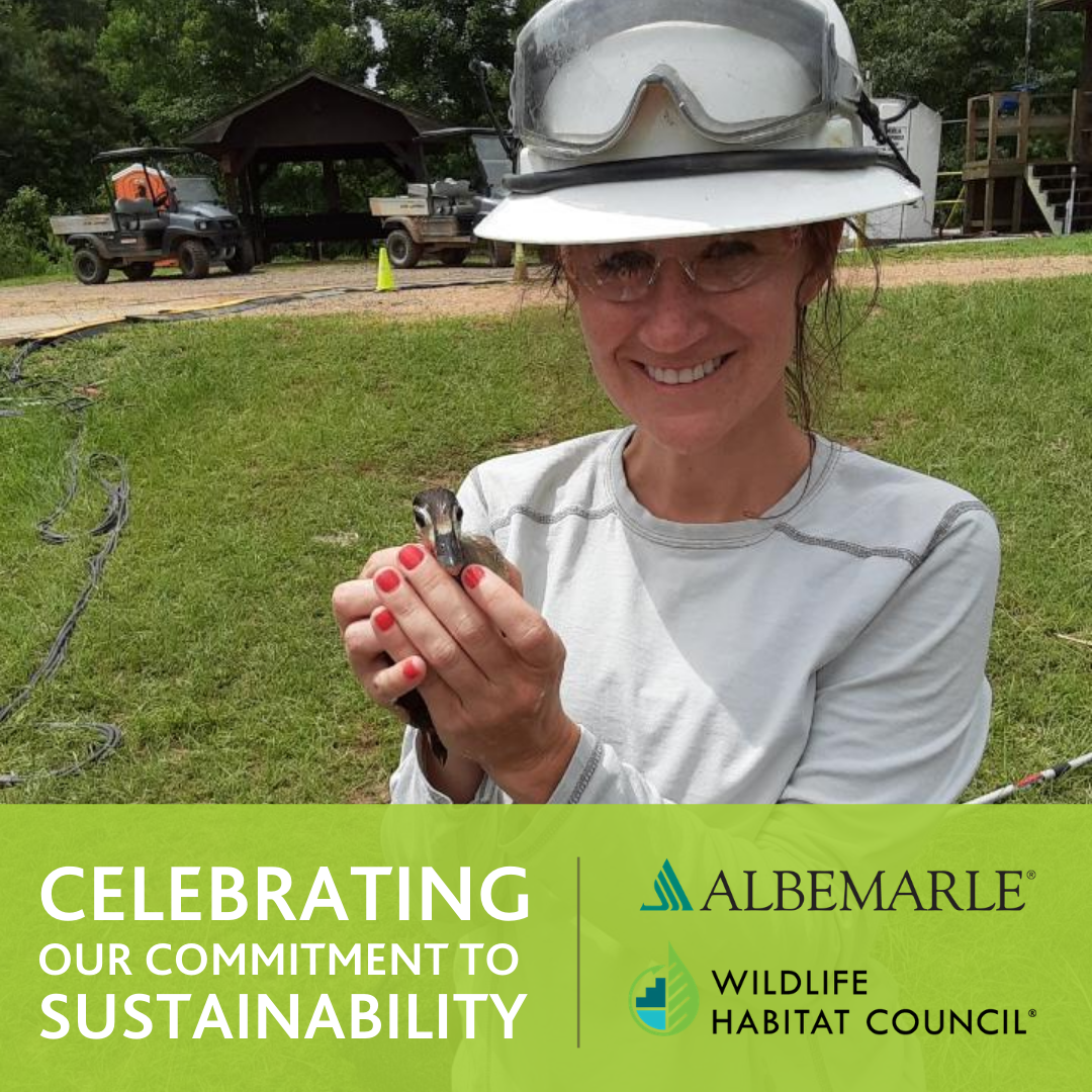 Celebrating Our Commitment to Sustainability